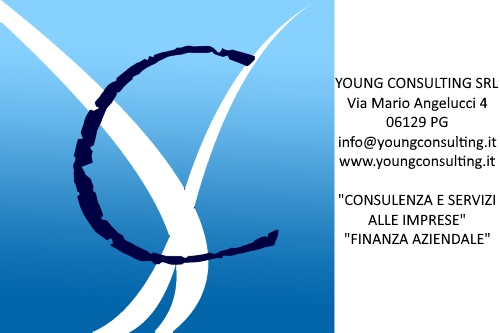 sp-young-consulting
